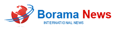 Borama News Network
